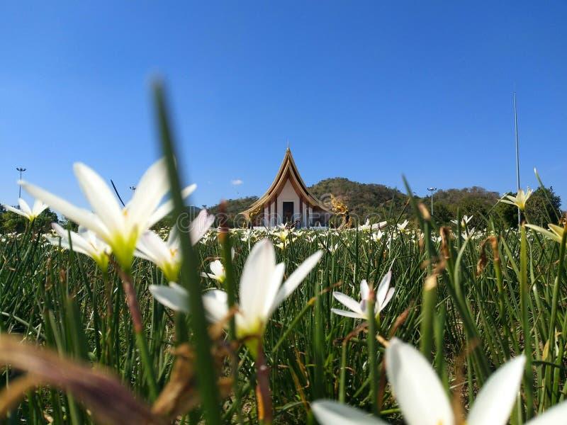 泰国Phetchabun, Wat Dhammayan 免版税图库摄影