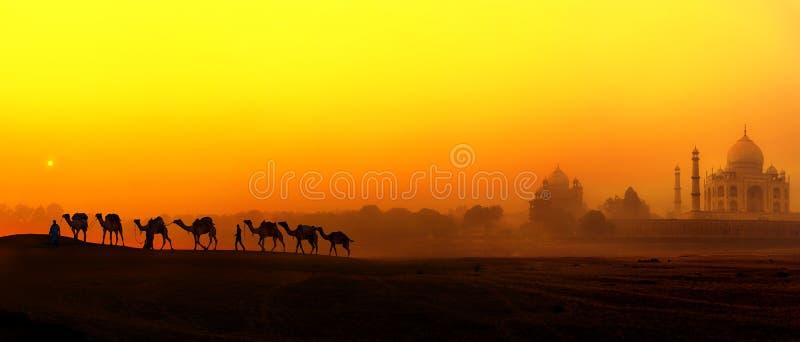泰姬陵宫殿在印度。印地安寺庙泰姬陵日落 免版税库存照片