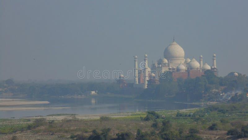 泰姬陵清真寺在阿格拉,印度 免版税库存照片