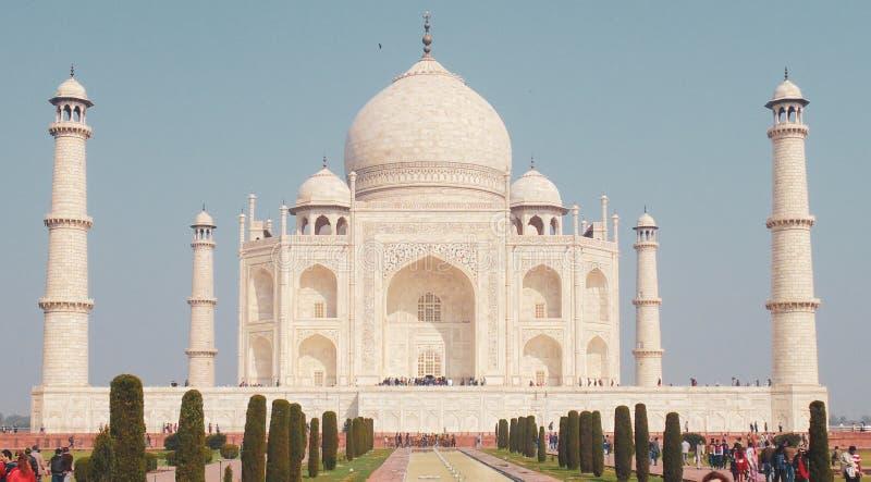 泰姬陵清真寺在阿格拉,印度 库存图片