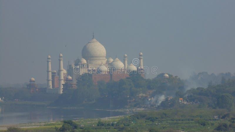 泰姬陵清真寺在阿格拉,印度 免版税库存图片