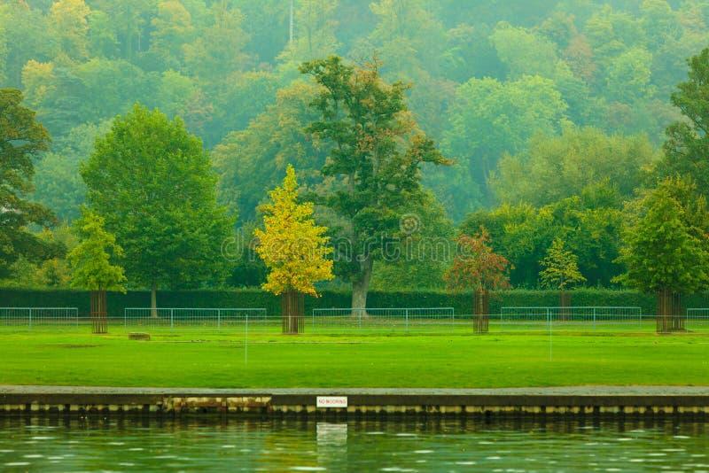 泰晤士河风景 秋天蓝色长的本质遮蔽天空 库存照片