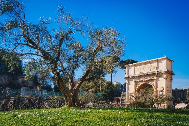 泰特斯曲拱通过骶骨罗马路在罗马,意大利 免版税图库摄影