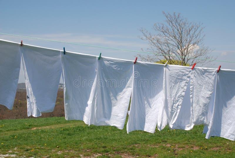 洗涤的白色 免版税库存照片
