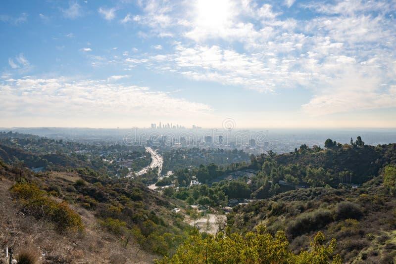 洛杉矶看法从好莱坞Hills的 进城la 好莱坞露天剧场 日观察的猫坐温暖晴朗的结构树 在蓝天的美丽的云彩 库存图片