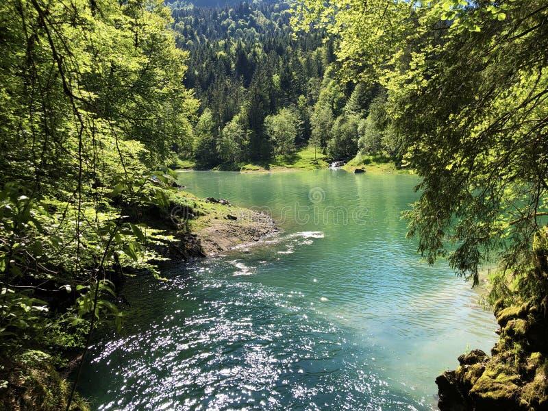 洞和来源由高山湖瓦吉塔莱尔湖或Waegitalersee,Innerthal的Hundsloch 库存图片