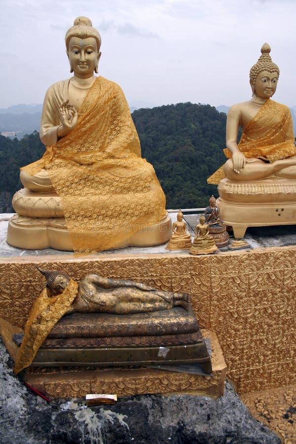 洞寺庙泰国老虎 免版税库存照片