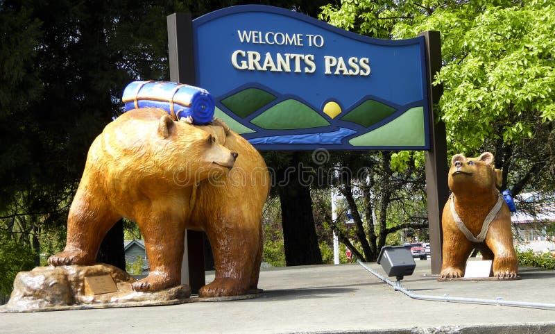 津贴通行证野营的熊 库存图片