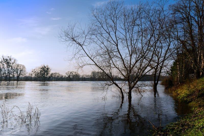 洪水的塞纳河顺流巴黎 库存图片