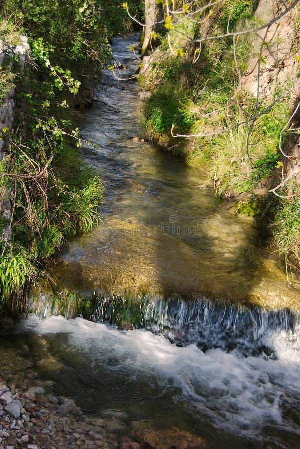 洪流在森林里 免版税库存照片