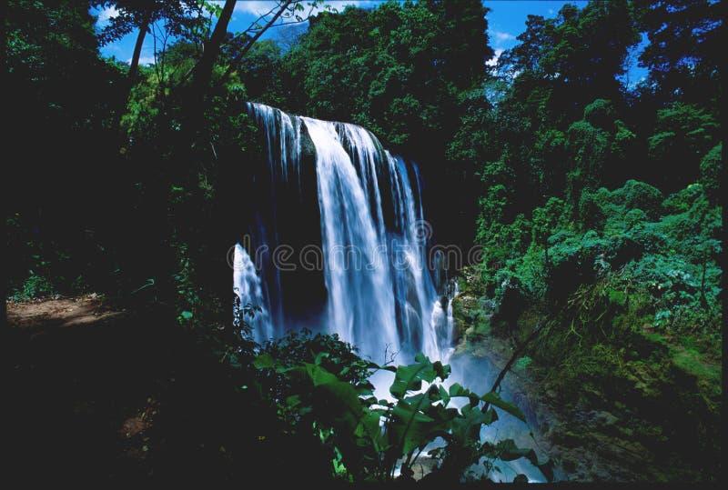 洪都拉斯瀑布yajoa 图库摄影