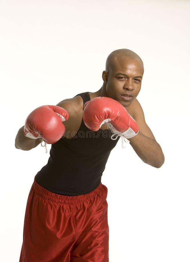 活动拳击手 库存照片