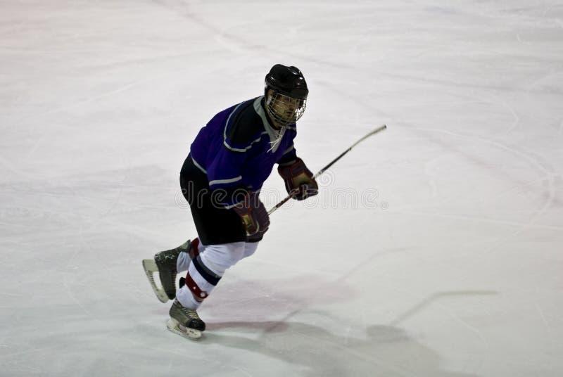 活动曲棍球冰 库存图片