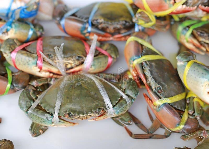 活螃蟹在海鲜市场,泰国上 库存图片