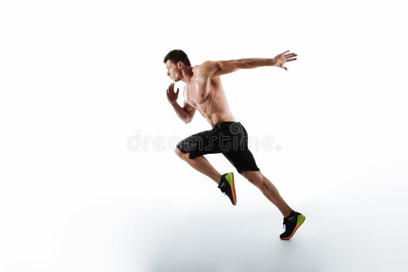 活跃年轻肌肉连续人全长画象  库存图片
