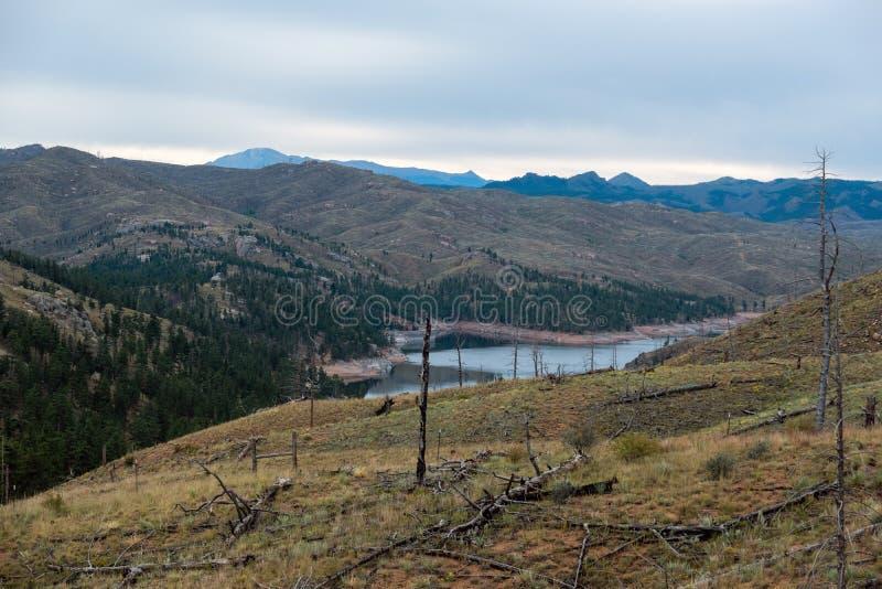派克国家森林损伤 免版税库存照片