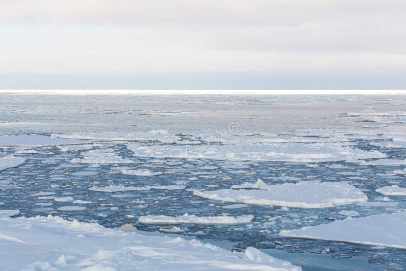 流冰,鄂霍次克海 库存图片