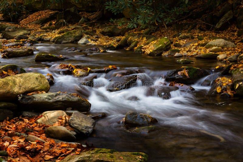 流动与秋叶和岩石发烟性山Natio的河 免版税库存图片