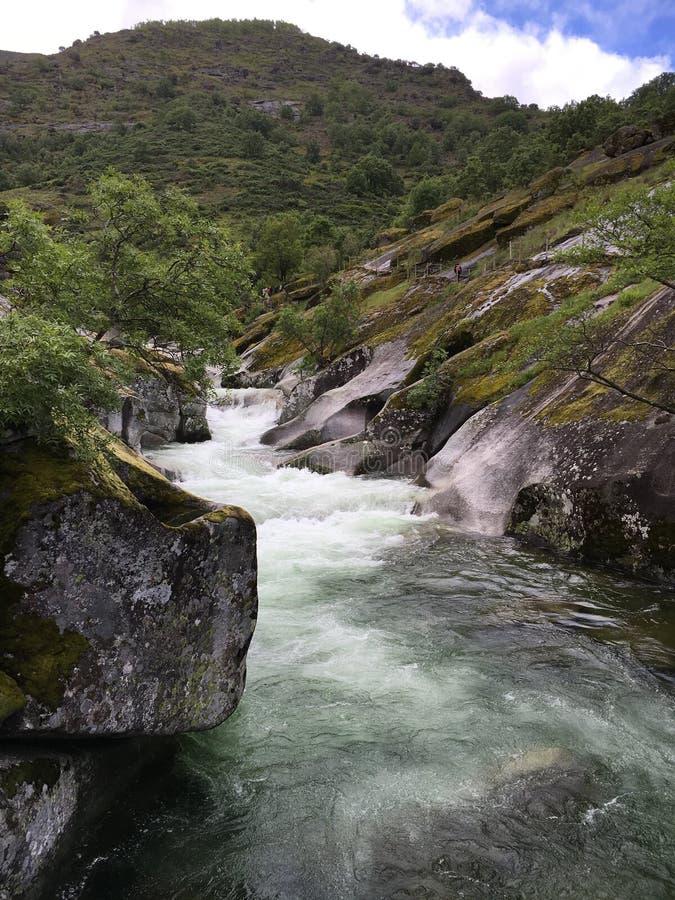 流动从山的怀特沃特河 免版税库存图片