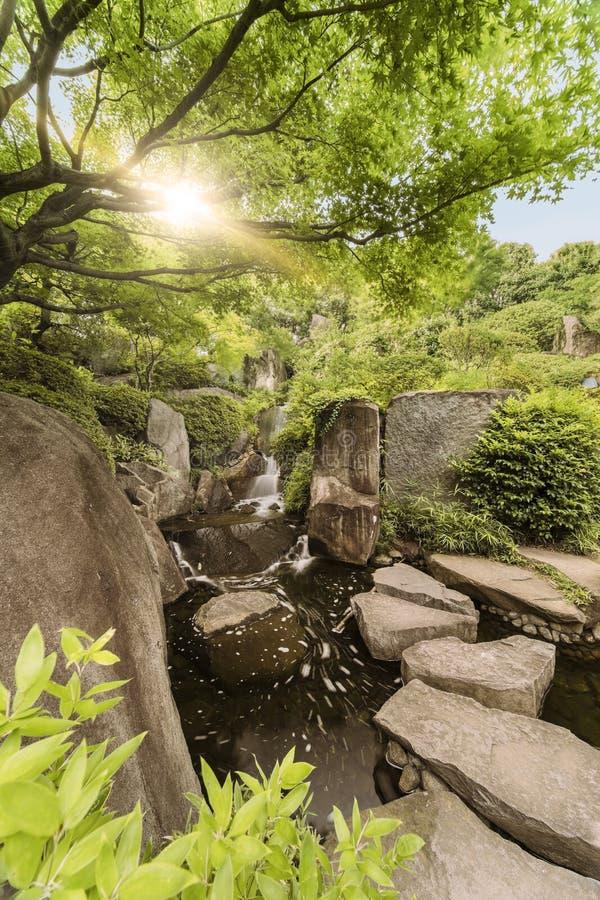 流动入中央池塘Meijiro庭院的瀑布 库存图片