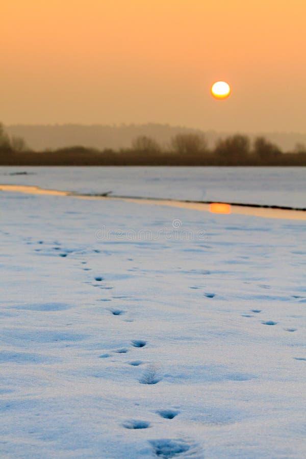 流动在冬天的小小河在日出期间 库存照片