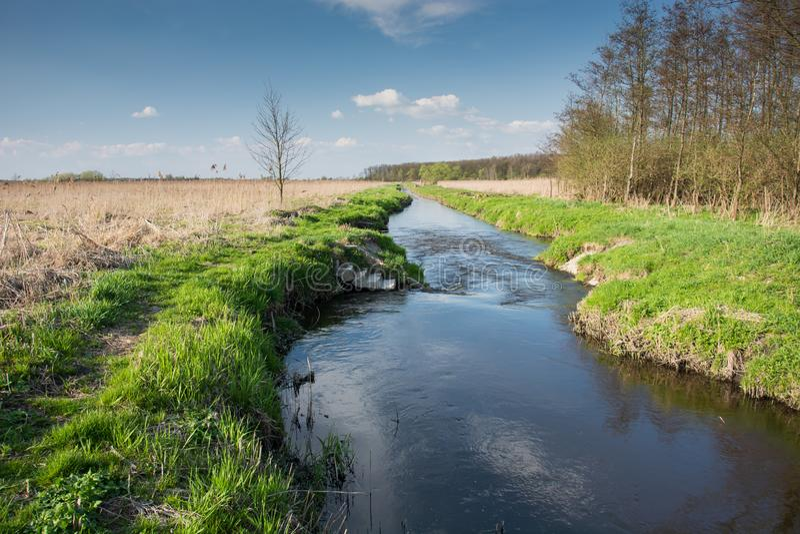 流动在波兰东部的河 免版税库存照片