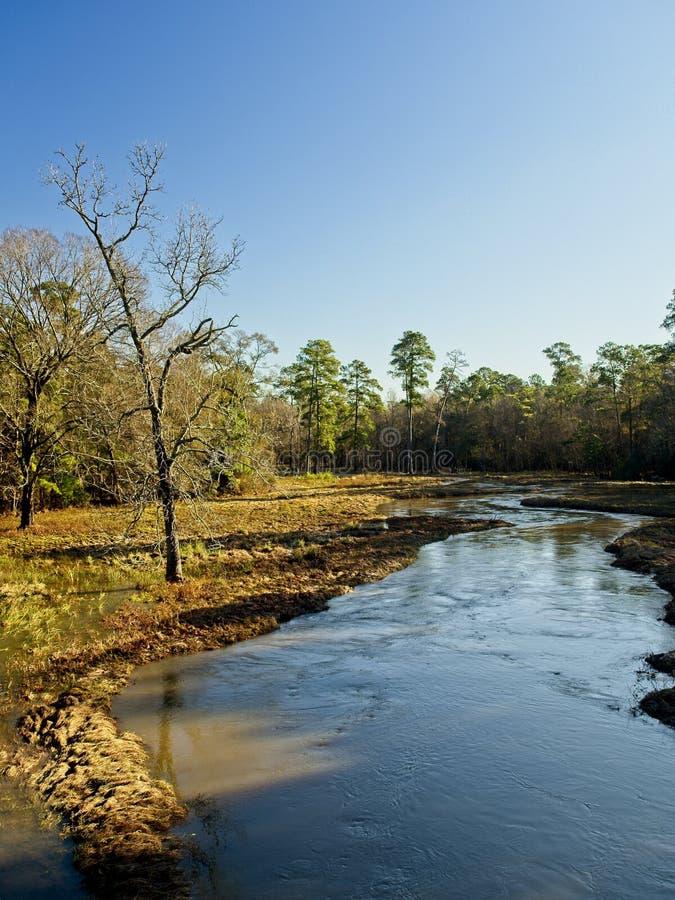 流动的小河和树在冬天 图库摄影