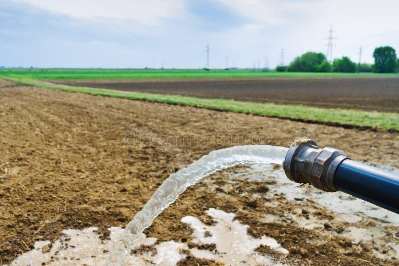 流动从水管的水在领域 库存图片
