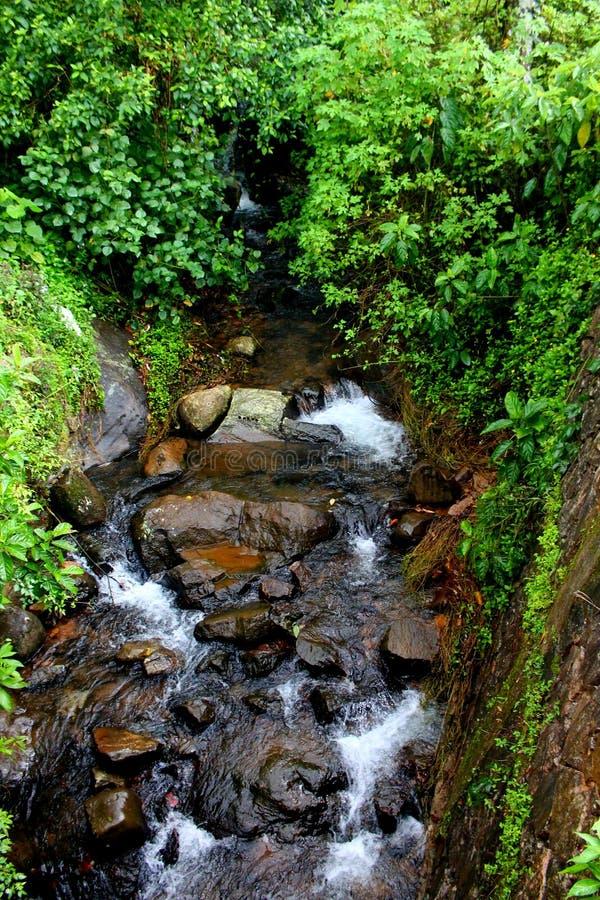 流本质泰国水 库存照片