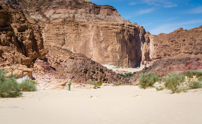 流浪者去一个村庄在高落矶山脉中的沙漠在埃及宰海卜南西奈 库存照片