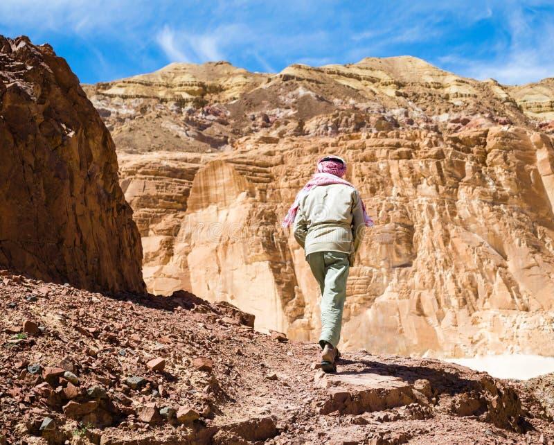 流浪者在埃及宰海卜南西奈攀登在一个峡谷的一座山 免版税库存图片