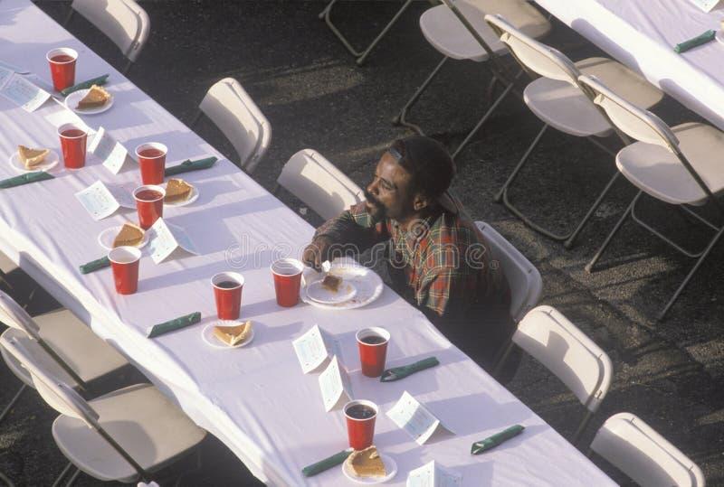 流浪者避身处的,洛杉矶,加利福尼亚一片黑食人的圣诞节沙漠 免版税库存照片