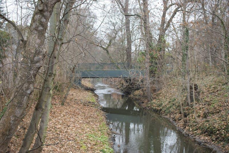 流经莱比锡动物园的小河 库存照片
