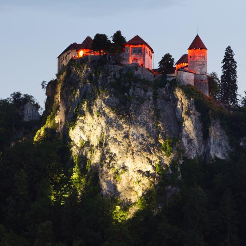 流血的城堡中世纪斯洛文尼亚 免版税库存图片