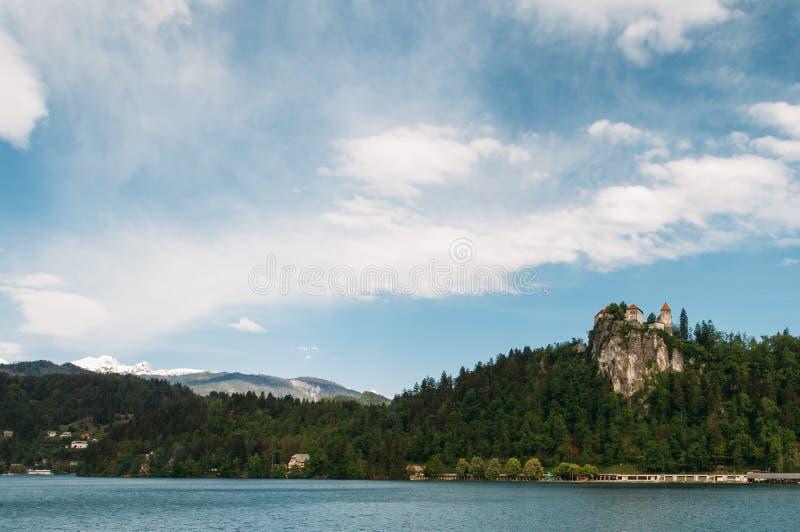 流血的城堡和森林  免版税图库摄影