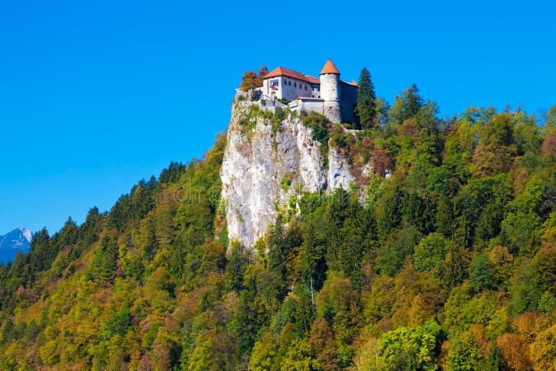 流血的城堡斯洛文尼亚 库存照片