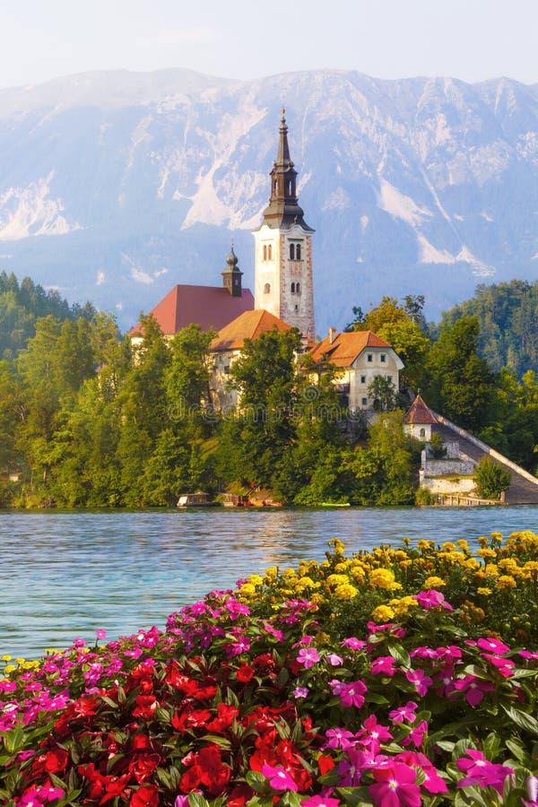 流血的斯洛文尼亚 在湖中间的海岛有教会的 免版税库存照片