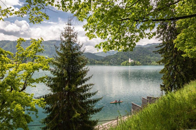 流血,斯洛文尼亚- 2019年5月18日:荡桨在木平底船的愉快的游人获得在流血的湖的乐趣在风景颜色和风雨如磐的天空 免版税图库摄影