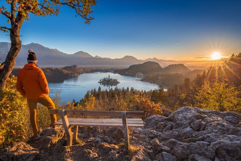 流血,斯洛文尼亚-戴橙色夹克和帽子的旅行家享受朱利安阿尔卑斯山全景秋天日出视图  库存照片