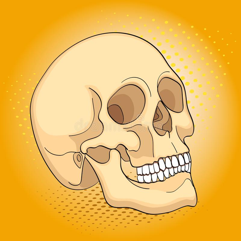 流行艺术医疗对象人头骨 漫画书样式模仿 库存例证