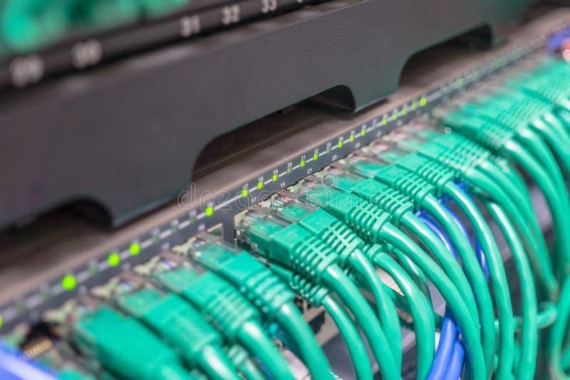 浅兰的插接线互联网缆绳 免版税库存照片