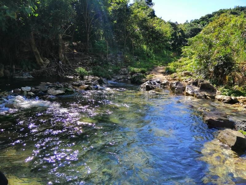 浅的河 库存图片