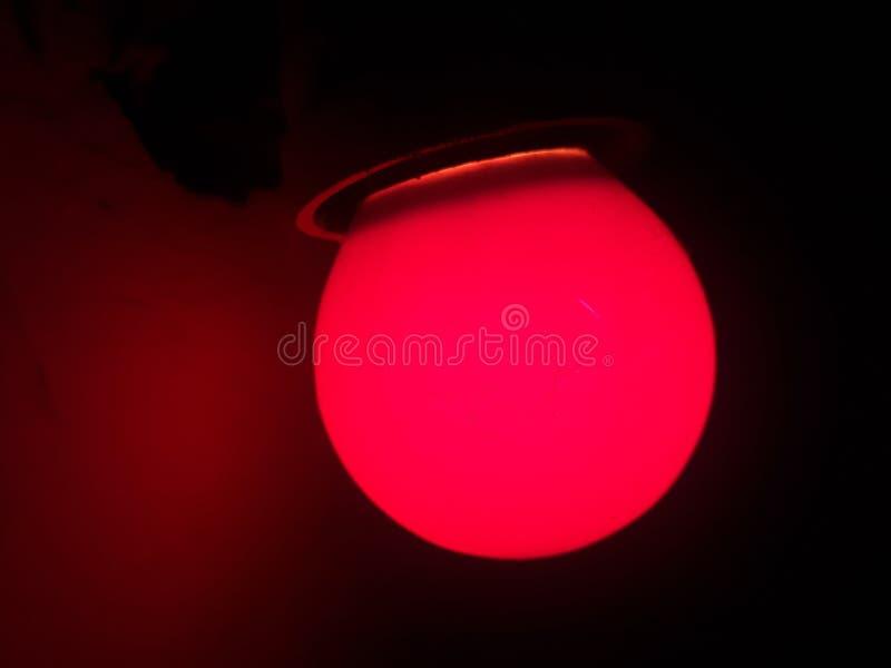 浅红色的电灯泡 免版税库存图片