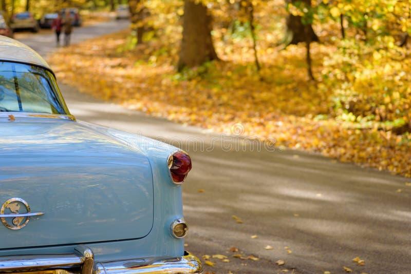 浅蓝色经典汽车后面看法在秋天的 免版税库存图片