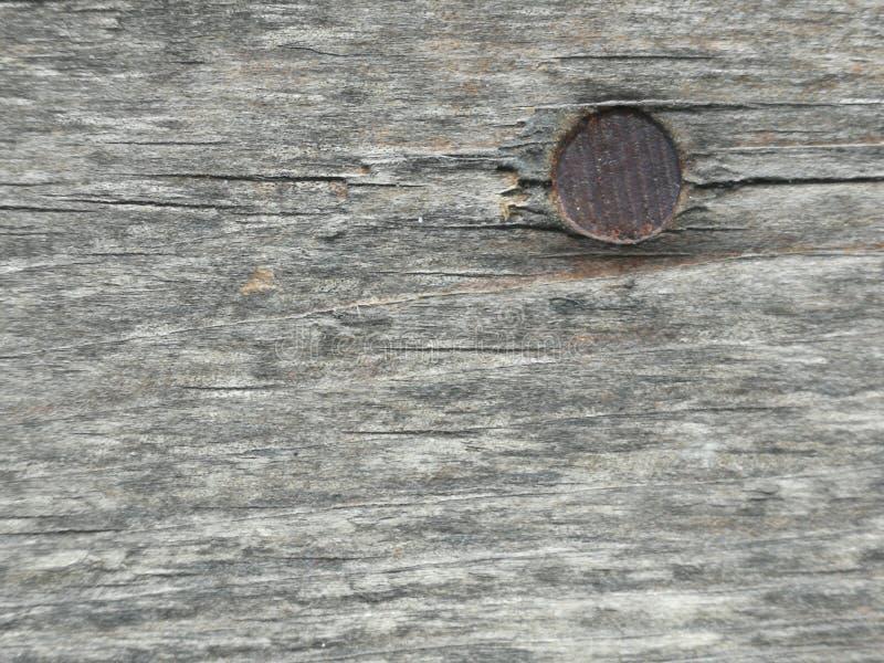 浅褐色的木表面,深木五谷,干燥老木头,水平的条纹 免版税库存照片