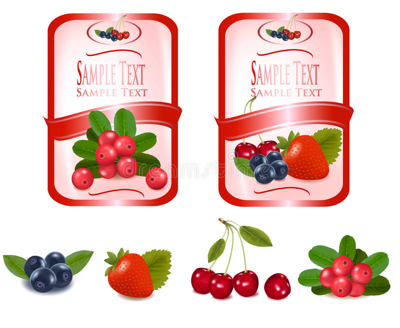 浆果樱桃标签红色二 皇族释放例证