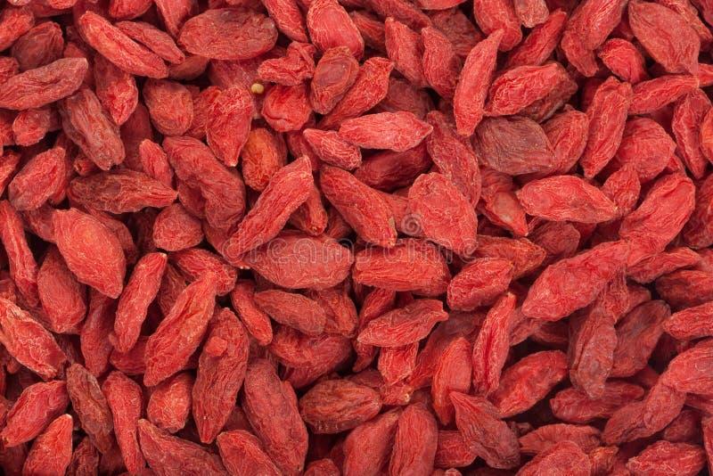 浆果烘干了goji 红色成熟goji莓果背景  免版税库存图片