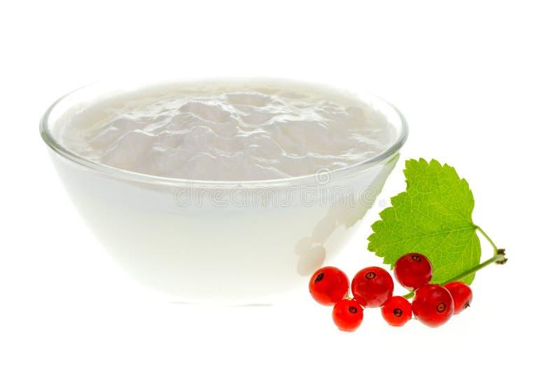 浆果碗红醋栗酸奶 免版税库存图片
