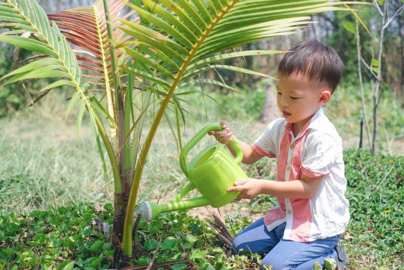 浇灌与喷壶的亚裔小孩男孩年轻树 免版税库存照片