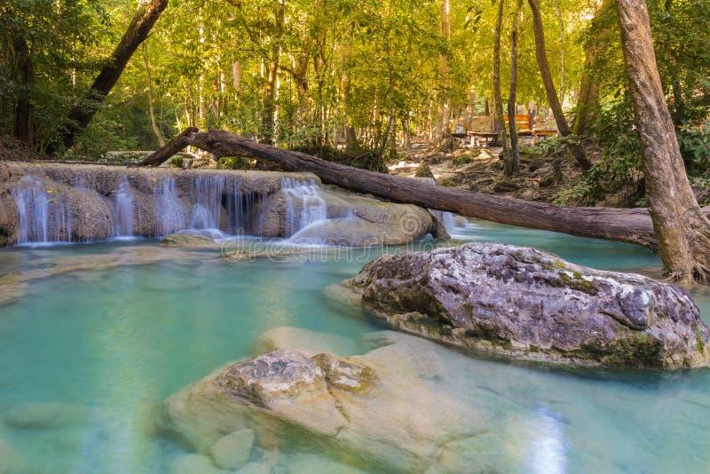 浇灌在位于深刻的雨林密林国家的春季的秋天 免版税库存照片